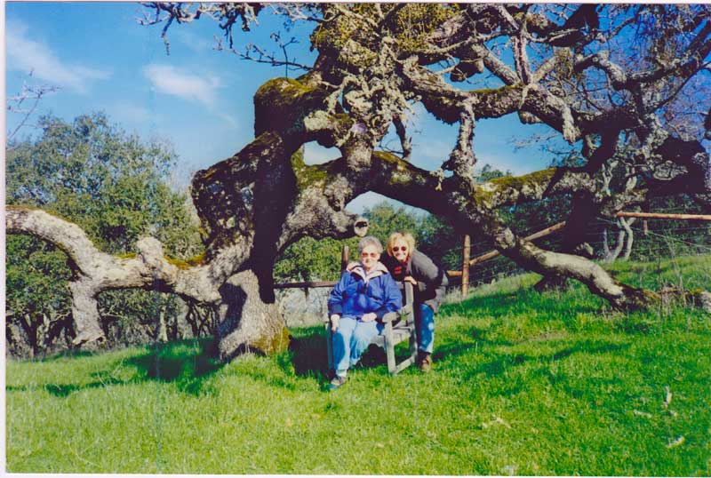 Kathleen Elsey painting workshop Sonoma CaliforniaMom and me sitting by old oak tree painting Sonoma California