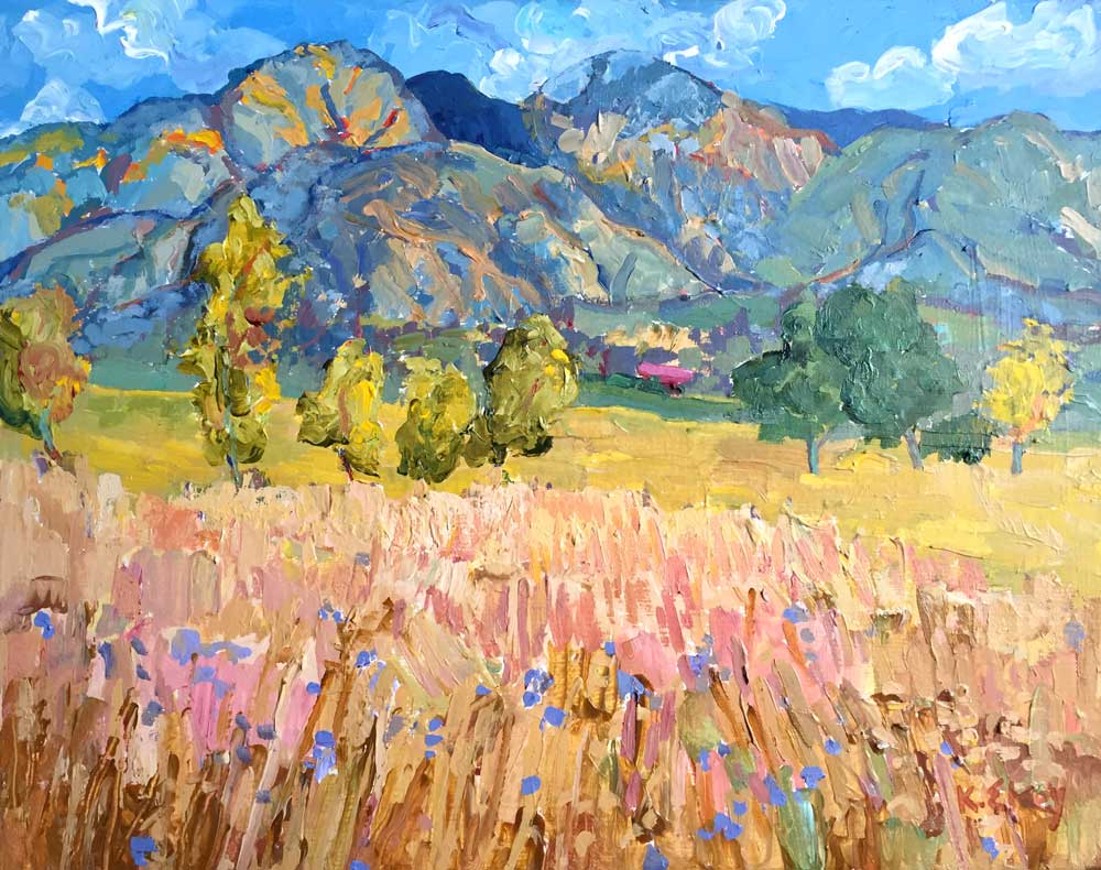 Taos Mountain Meadow